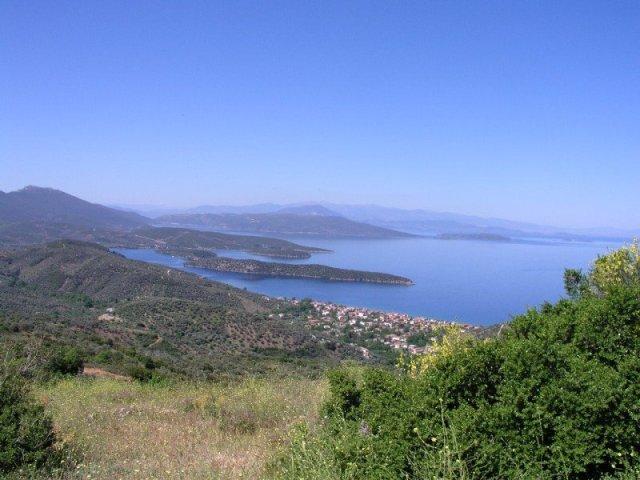 Milina o ostrvo Alatas. Foto: gastwo