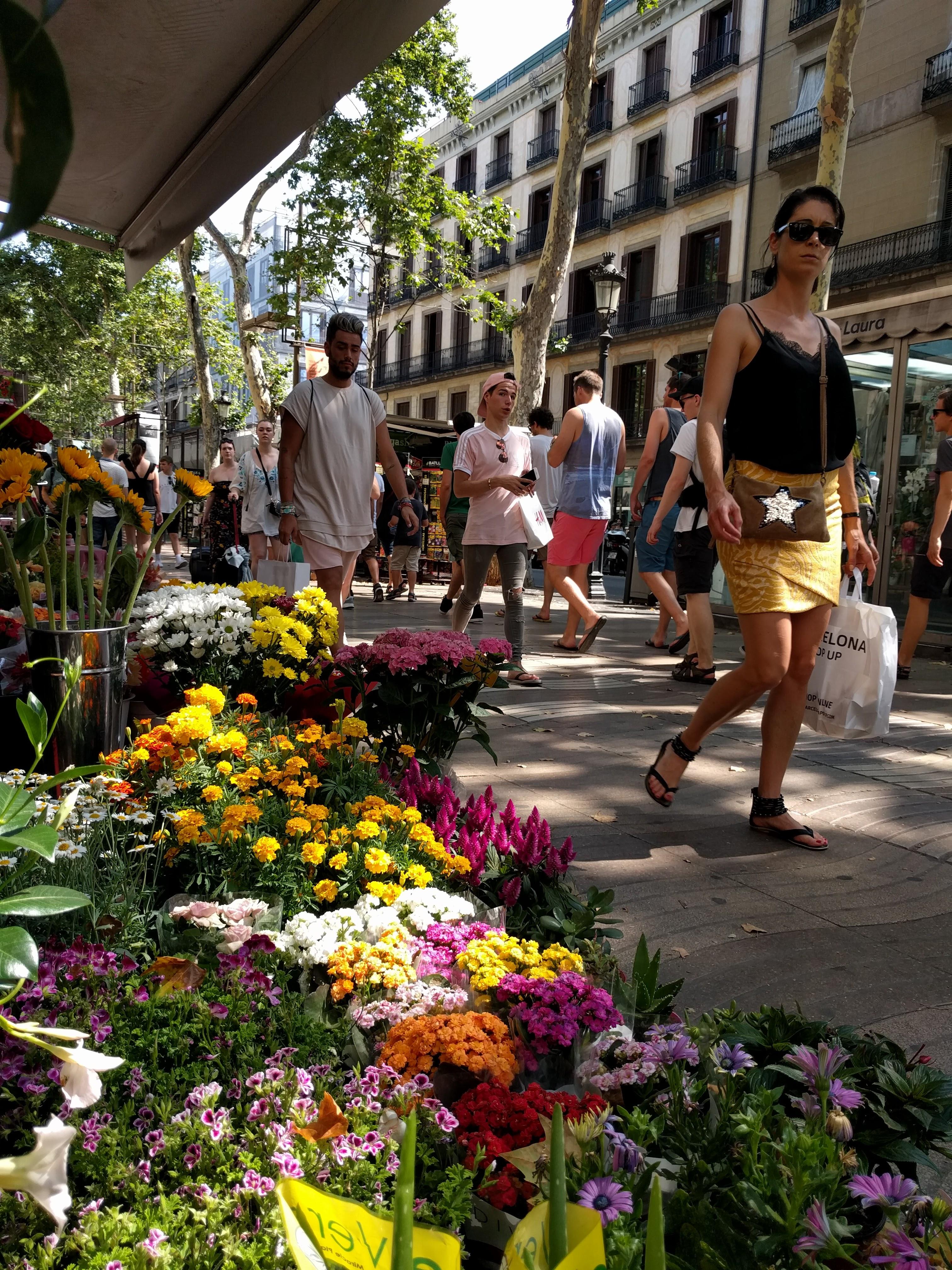 Barselona je La Rambla. Avenija sa šetalištem i dva drvoreda videla je pobune, štrajkove, pobedničke marševe, čak i jedan teroristički napad, ubrzo nakon što sam je upoznala. Bila je simbol otpora Katalonaca prema španskoj vlasti. Za nju je čuveni španski pesnik iz Andaluzije, Federiko Garsija Lorka, rekao da bi voleo da nema kraj.